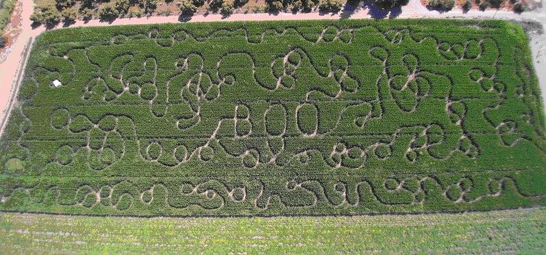 2016 Corn Maze Aerial View