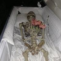 Skeleton in Coffin